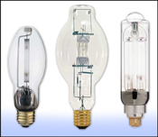 High Intensity Discharge Light Bulbs