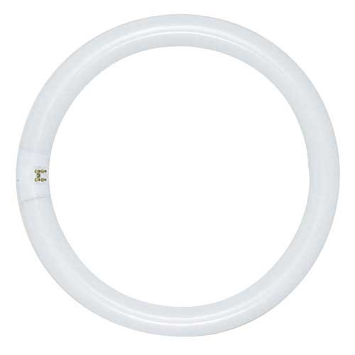 12'' 32W CIRCLINE T9 FLUORESCENT TUBE DAYLIGHT 6500K. CASE OF 12