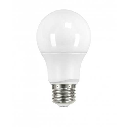 6.5W LED A19 HOUSEHOLD LIGHTBULB 2700K