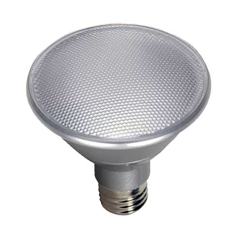 LED PAR30 Short Neck