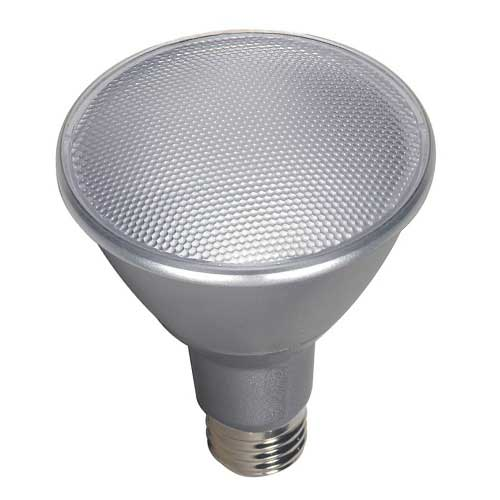 LED PAR30 Long Neck